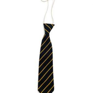 Woodmansterne Primary School - elastic-tie